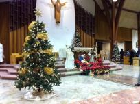 st joes christmas